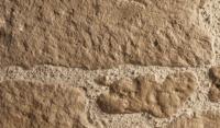 Parement moellon rustique emballé 2cm PIERRA
