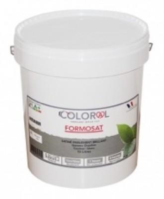 Peinture int rieure satin e formosat 5 litres blanc - Peinture satinee blanc ...