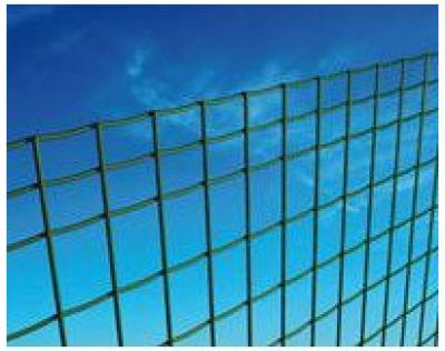 Grillage EXECUTIVE LEGER maille 100x50mm fil 2,20mm galvanisé plastifié vert 2000x25000