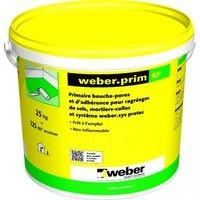 Weber.prim RP seau de 4kg WEBER
