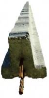 Poutrelle précontrainte RECTOR B111 RS 0,8m RECTOR LESAGE