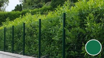 Panneaux HERCULES PLUS 2.03x2.50ml vert 6005 maille 200x55mm fils galva diamètre 5mm KOLYS SA
