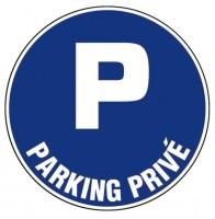 Disque diamètre 300mm parking privé BRICODEAL