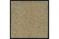 Dalle ANTIQUE 40x40x3.5cm petit grain NOVADAL PRIVAT