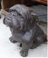 Statut chien Bulldog