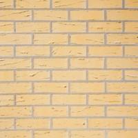 Brique perforée Saumur 220x105x65mm TERCA