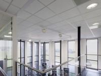 Dalle de plafond THERMATEX ALPHA VT S24 épaisseur 19mm 600x600mm AMF