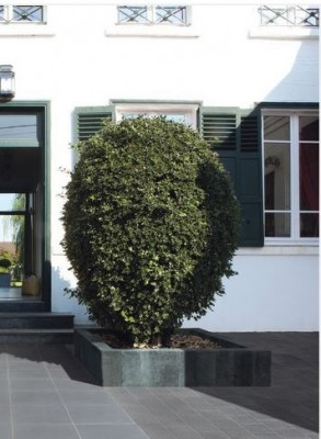 Bordure GARDINO lava 11x14x90cm MARLUX