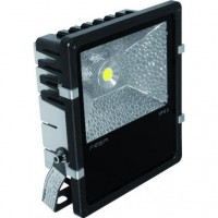 Projecteur LED 50W 5000K