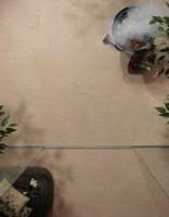 Carrelage KOBE calcite 60x60cm 20mm NOVOCERAM