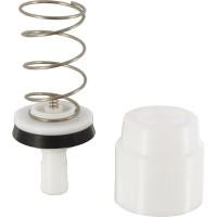 Sachet de maintenance DL30/40 5 (pistons complets + joints torique) PRESTO