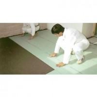 Plaque de plâtre PREGYCHAPE 13x2400x600 SINIAT