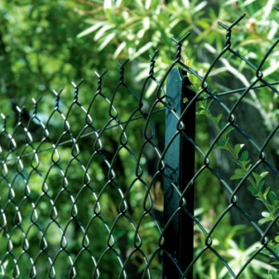 Plastipalce compacte vert longueur 25m hauteur 1,20m