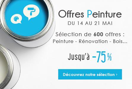 Offres Peinture - Sélection de 600 produits jusqu'à -75%